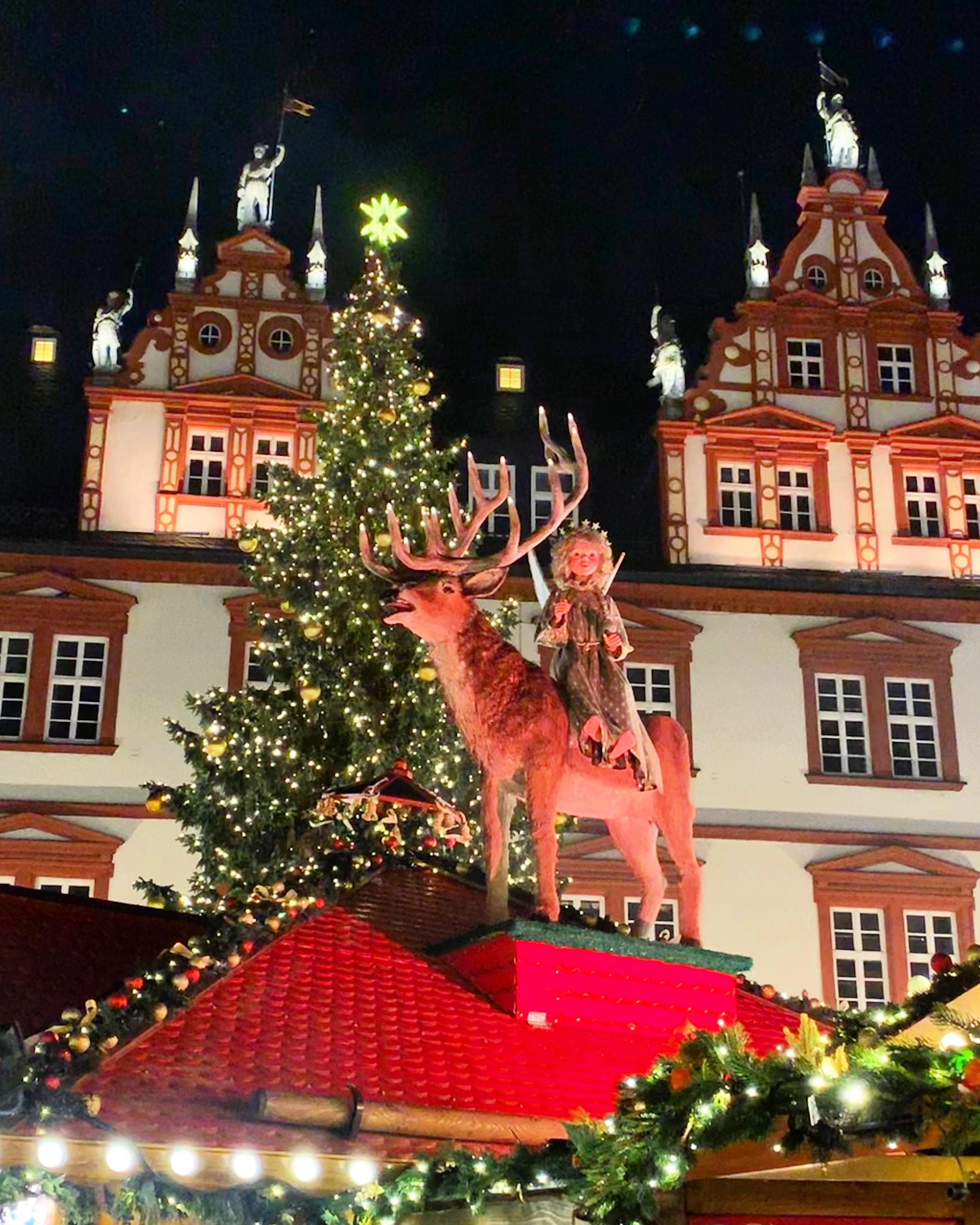 reindeer christmas market
